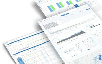 The Role of Big Data in Revenue Management